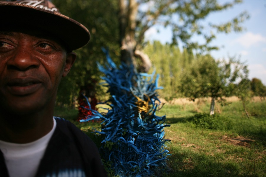 Ousmane Gueye's - THE BLUE FOREST